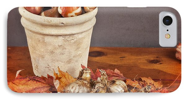Fall Bulbs 1 IPhone Case by Verena Matthew