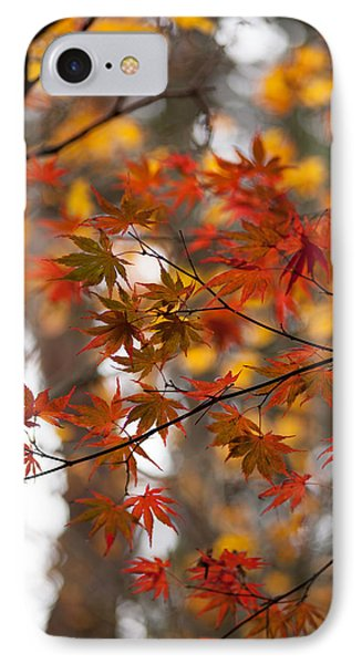 Fall Color Montage Phone Case by Mike Reid