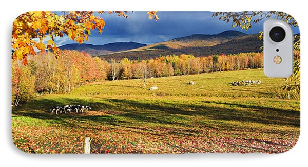 Fall Colours, Cows In Field And Mont Phone Case by Yves Marcoux