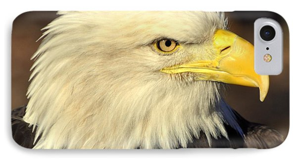 Fall Eagle 1 Phone Case by Marty Koch