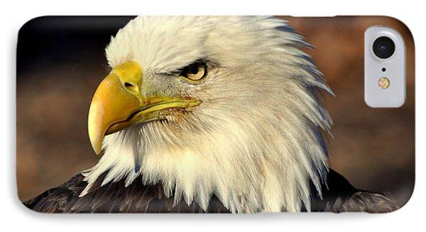 Fall Eagle 4 Phone Case by Marty Koch