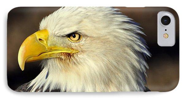 Fall Eagle 6 Phone Case by Marty Koch