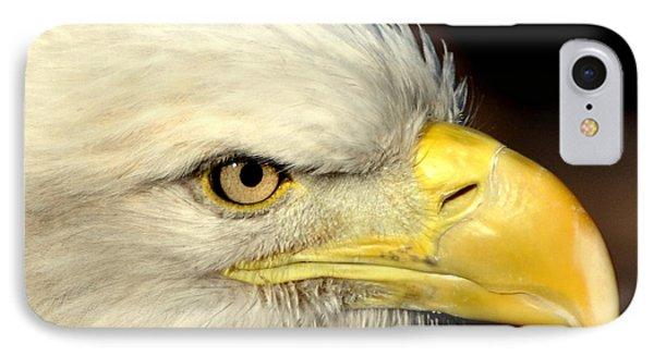 Fall Eagle  Phone Case by Marty Koch
