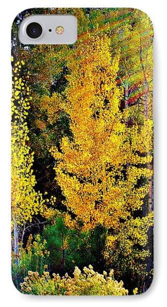 Fall Fantasy Phone Case by Ellen Heaverlo