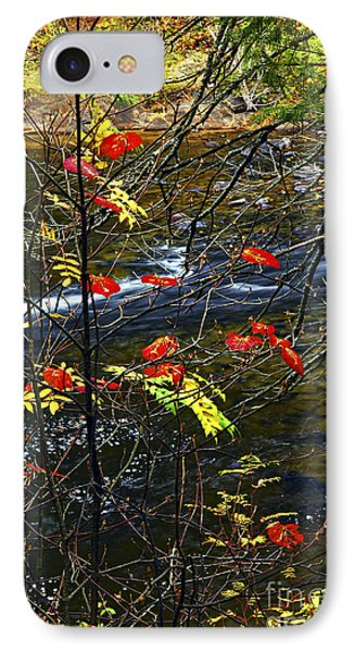 Fall Forest And River Phone Case by Elena Elisseeva