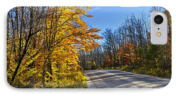 Fall Forest Road Phone Case by Elena Elisseeva