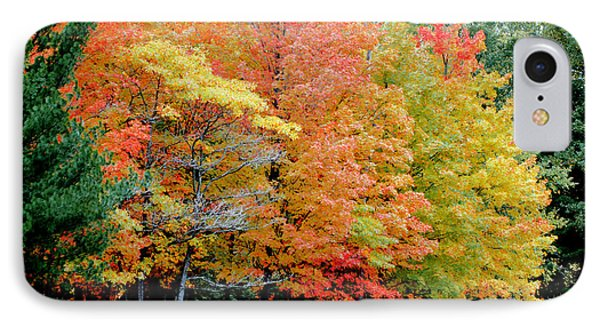 Fall In Michigan Phone Case by Optical Playground By MP Ray