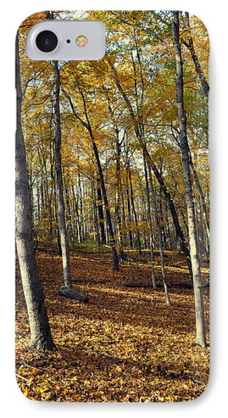 Fall In The Forest 1 Phone Case by Marty Koch
