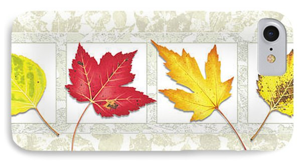 Fall Leaf Panel IPhone Case by JQ Licensing