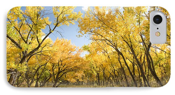 Fall Leaves In New Mexico IPhone Case by Shane Kelly