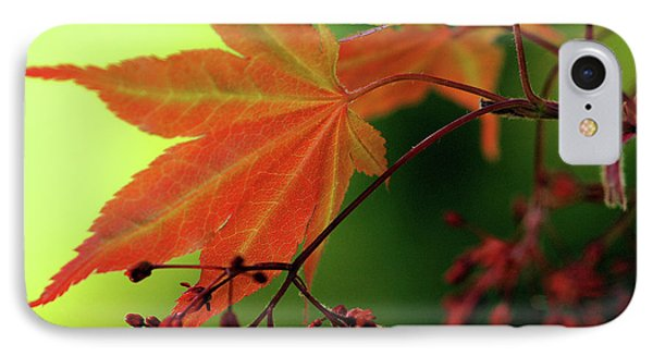 Fall Leaves IPhone Case by Michelle Joseph-Long