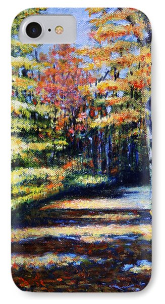 Fall Path Phone Case by Paul Walsh
