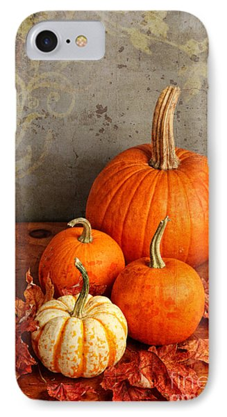 Fall Pumpkin And Decorative Squash IPhone Case by Verena Matthew