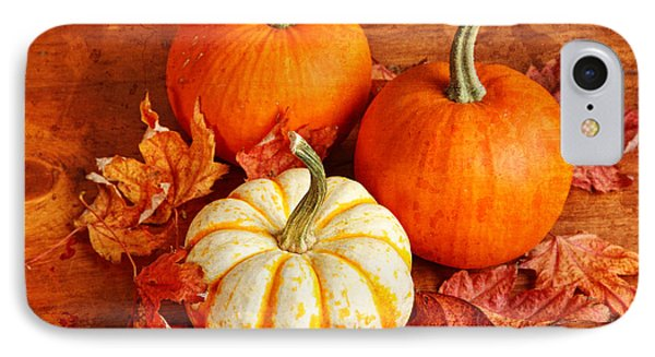 Fall Pumpkins And Decorative Squash IPhone Case by Verena Matthew
