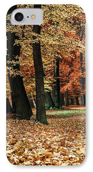 Fall Scenery Phone Case by Hannes Cmarits