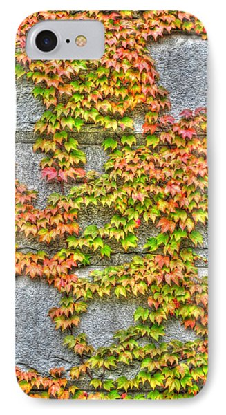 IPhone Case featuring the photograph Fall Wall by Michael Frank Jr