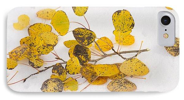 Fallen Autumn Aspen Leaves Phone Case by James BO  Insogna
