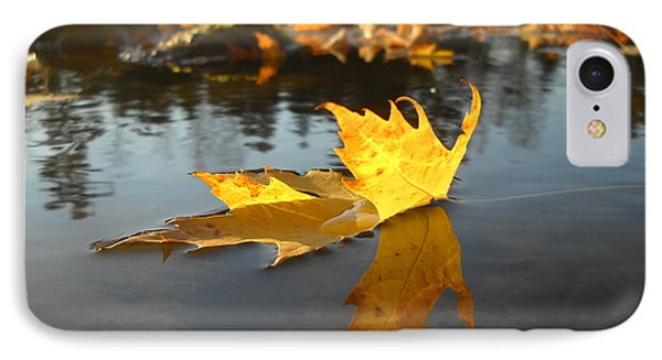 Fallen Maple Leaf Reflection IPhone Case