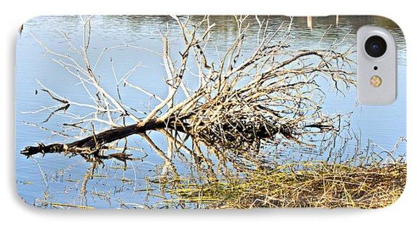 Fallen Tree Phone Case by Douglas Barnard