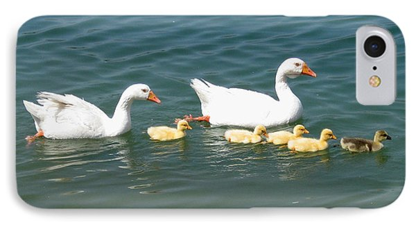 Family Outing On The Lake Phone Case by Ed Churchill