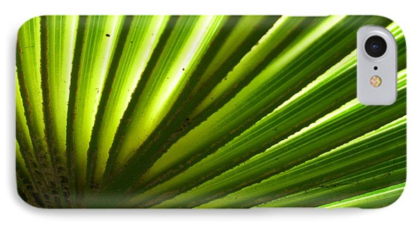 IPhone Case featuring the photograph Fan Frond by Ginny Schmidt