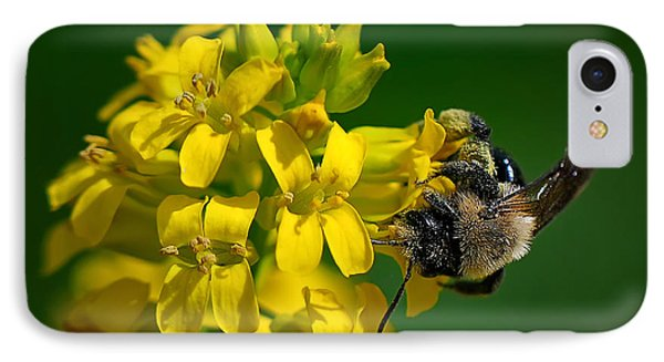 Fanfare For The Common Bumblebee Phone Case by Lois Bryan