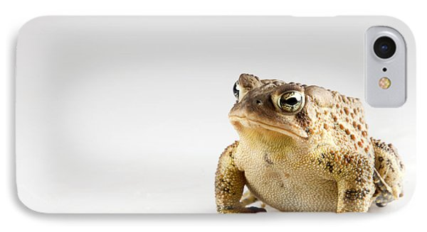 Fat Toad IPhone Case by John Crothers