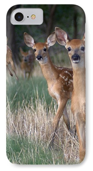 Fawns Fawns Phone Case by Bill Stephens