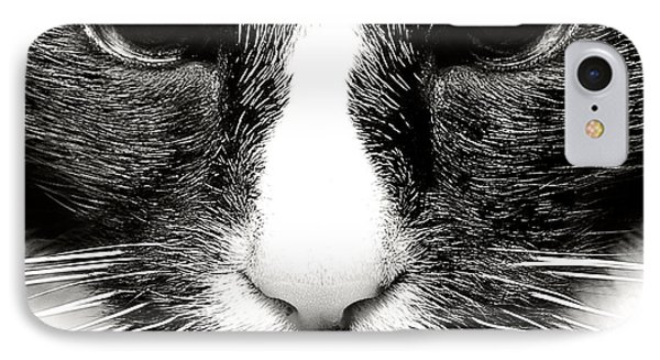 Fearless Feline IPhone Case by Lenny Carter