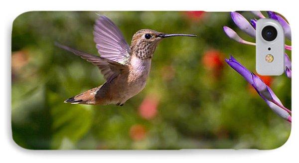 Female Allen's Hummingbird Phone Case by Mike Herdering
