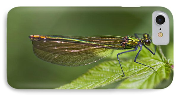 Female Banded Demoiselle Damselfly IPhone Case by Dr Keith Wheeler