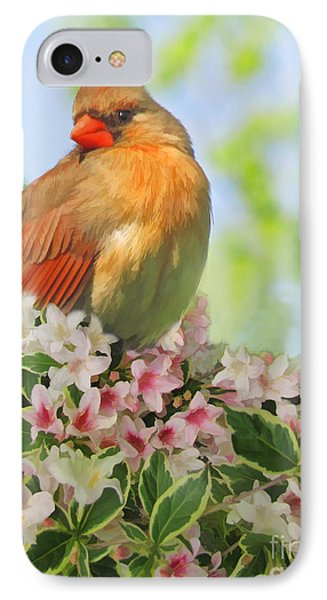 IPhone Case featuring the photograph Female Cardnial In Wegia Digital Art by Debbie Portwood