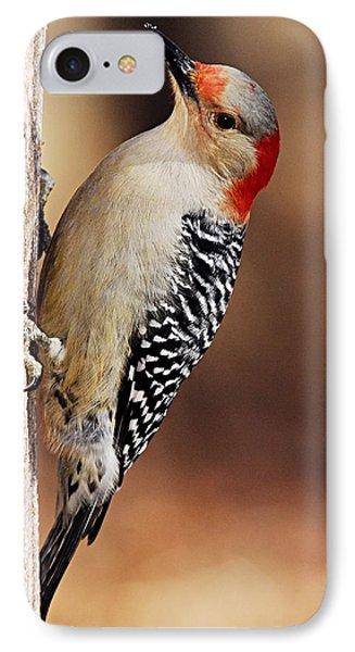 Female Red-bellied Woodpecker 5 Phone Case by Larry Ricker