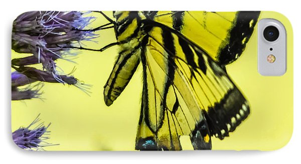 IPhone Case featuring the photograph Female Tiger Swallowtail Butterfly by Brian Stevens