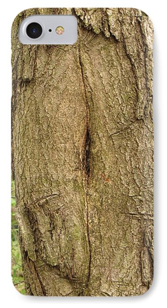 IPhone Case featuring the photograph Female Tree by John Crothers