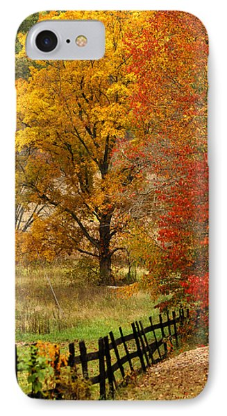 Fence In Autumn Phone Case by Randall Branham