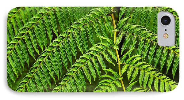 Fern Fronds Phone Case by Carlos Caetano