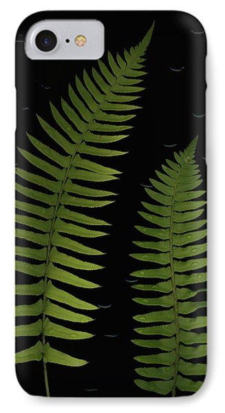 Fern Leaves With Water Droplets Phone Case by Deddeda