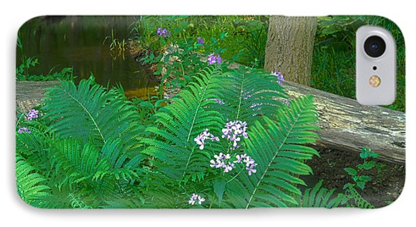 Ferns And Phlox Phone Case by Michael Peychich