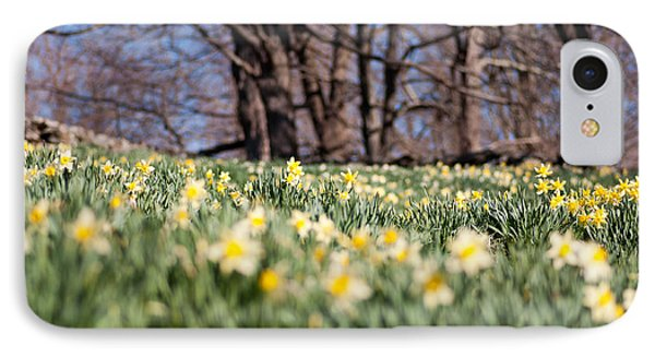 Field Of Daffodils Phone Case by Ron Smith