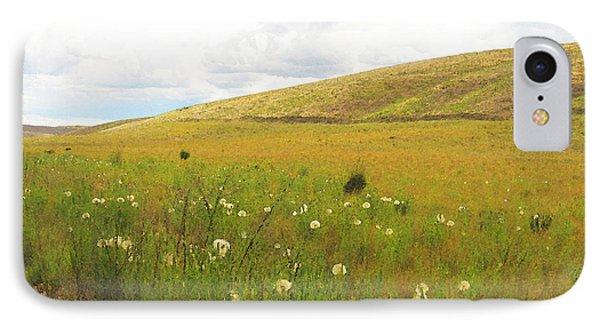 Field Of Dandelions IPhone Case by Anne Mott