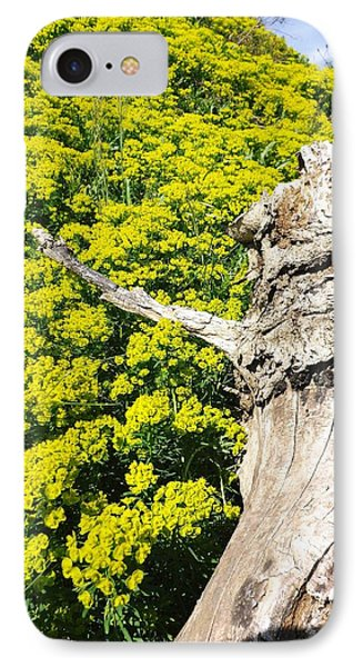 IPhone Case featuring the photograph Field Of Flowers 1 by Gerald Strine