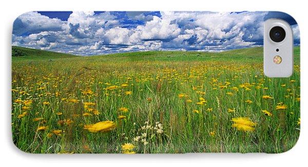Field Of Flowers, Grasslands National Phone Case by Robert Postma