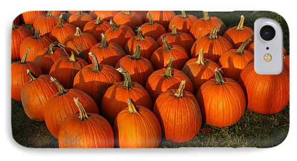 Field Of Pumpkins Phone Case by LeeAnn McLaneGoetz McLaneGoetzStudioLLCcom
