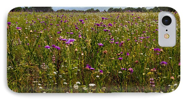Field Of Thistles Phone Case by Tamyra Ayles