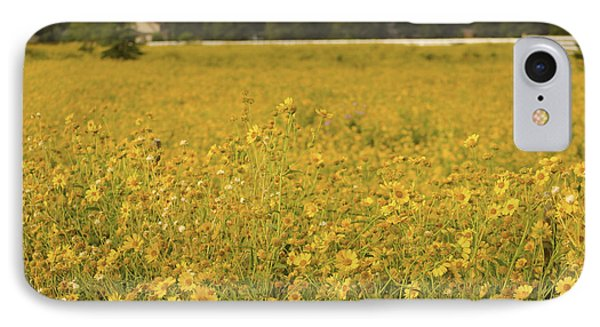 Field Of Yellow Daisy's IPhone Case by Donna Greene