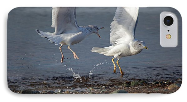 Fighting Gulls Phone Case by Karol Livote