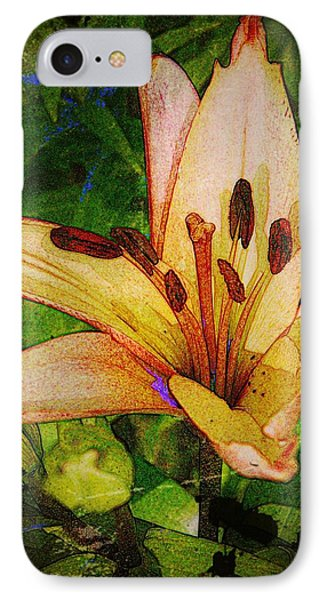 First Asiatic  Phone Case by Chris Berry