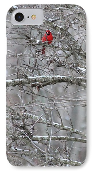 First Snow Fall IPhone Case by Kume Bryant