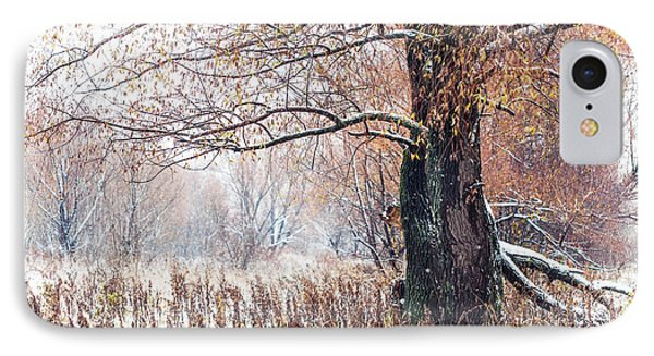 First Snow. Old Tree Phone Case by Jenny Rainbow
